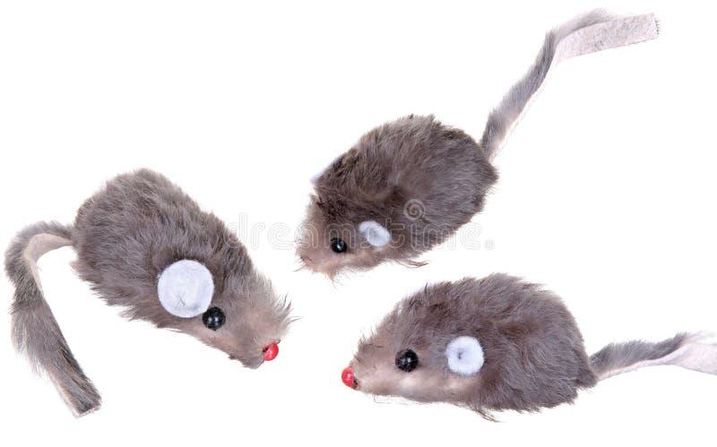 Cat Fishing Toy - rato na corda com branco de Polo fotos de stock royalty free