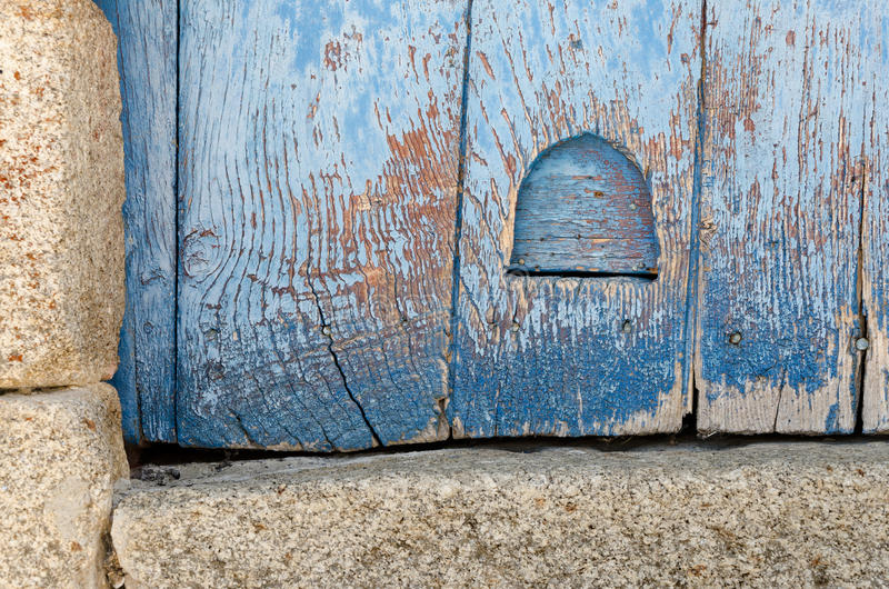Download Cat Flap stock photo. Image of image, rustic, blue, buildings - 32902084