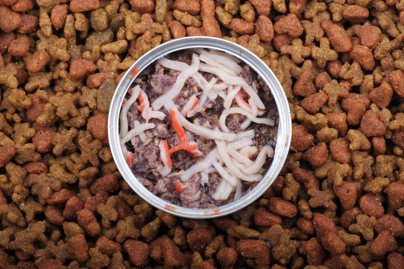 Cat food. And  canned royalty free stock image