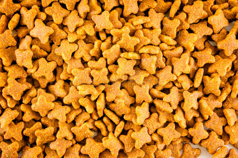 Cat food background royalty free stock image