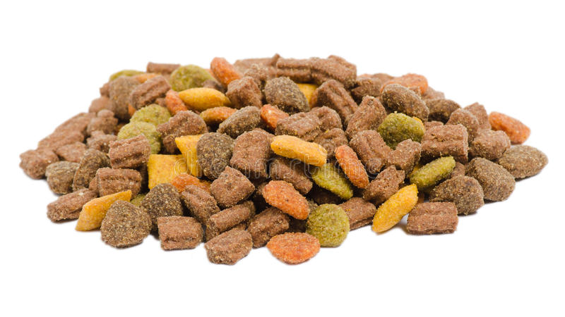 Cat food. Isolated on a white background stock image