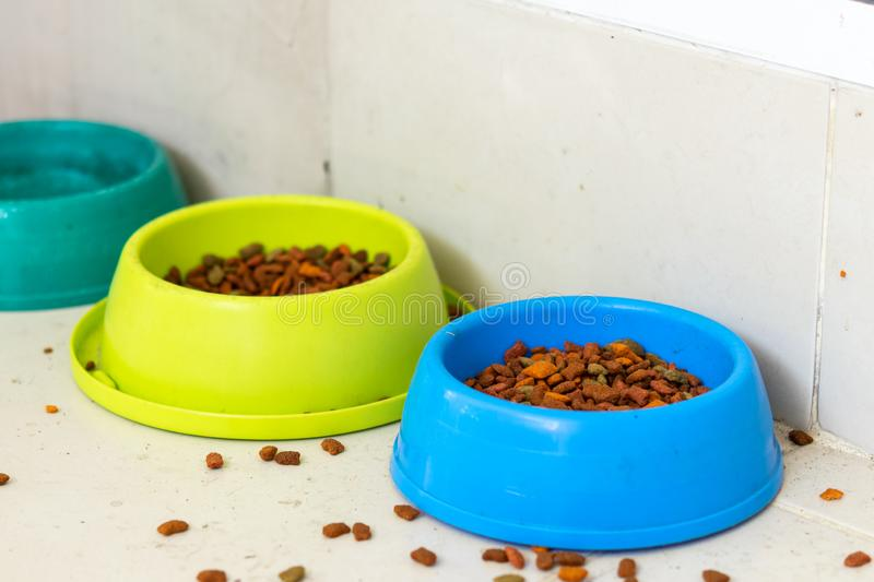 Cat food in two bowls set for stray cats stock photos