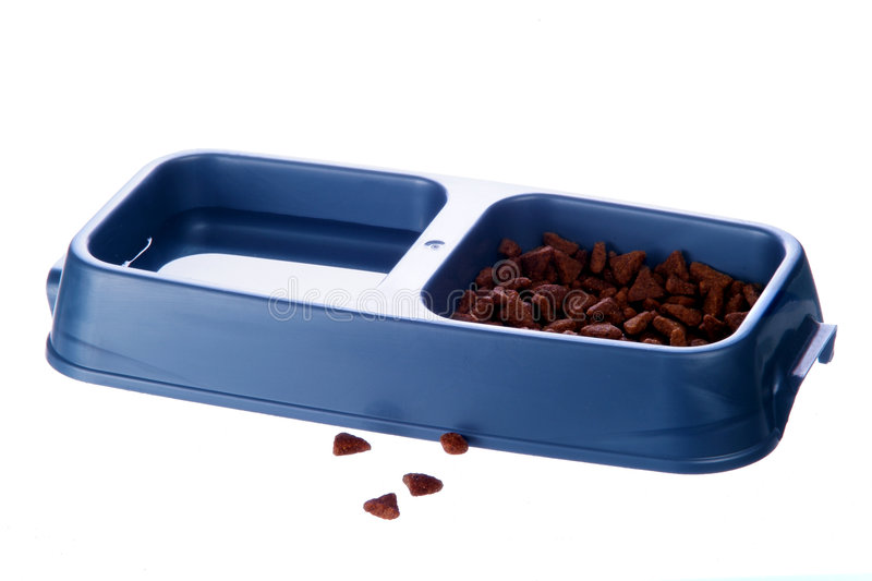 Cat food and water bowl stock photography