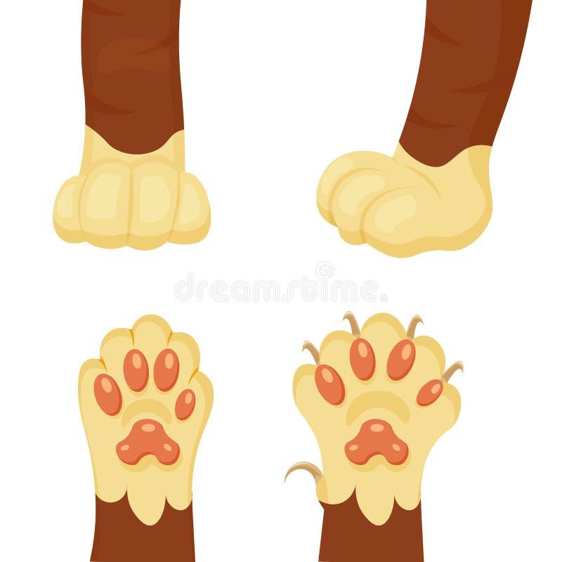 Cat Foot Images - Cute Cat 2017