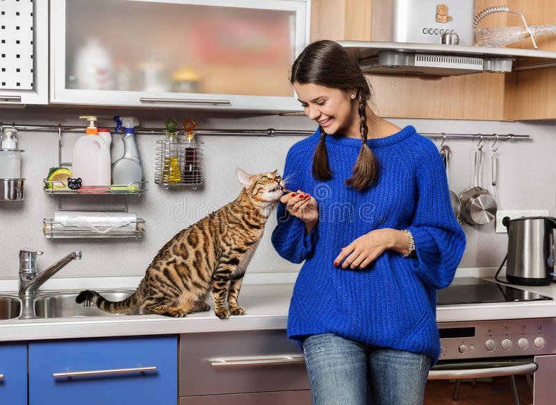 Cat and girl in the kitchen. royalty free stock photography