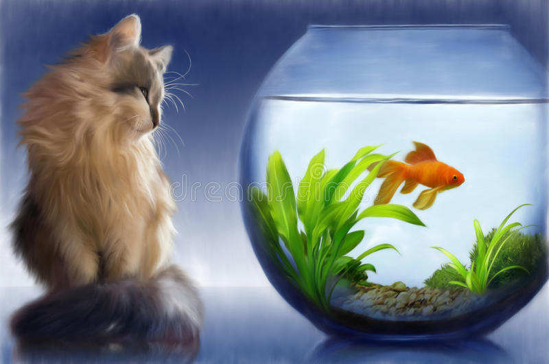 Cat and a goldfish. Cat looking at goldfish in fishbowl