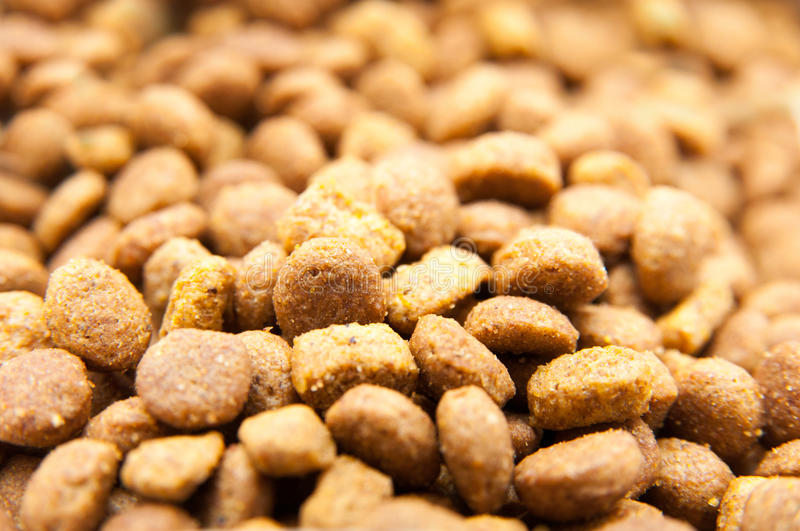 Cat grains stack stock photography