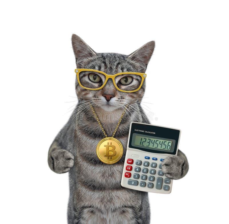 cât de mult pot face mining bitcoin)