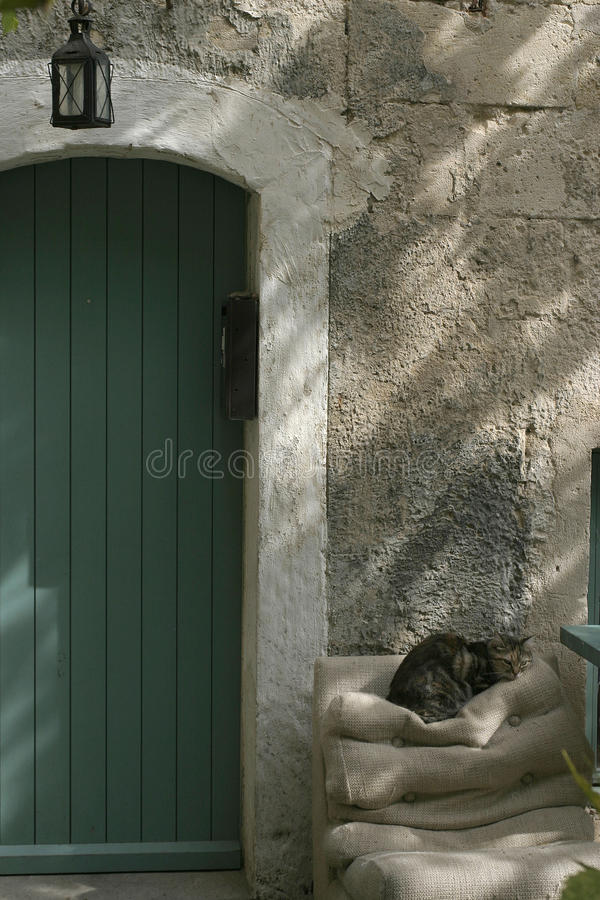 Cat by a green door against stone wall. Dappled light with cat sitting on soft lounger stock photos