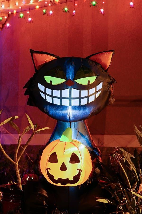 Cat Halloween Decoration noire photos libres de droits