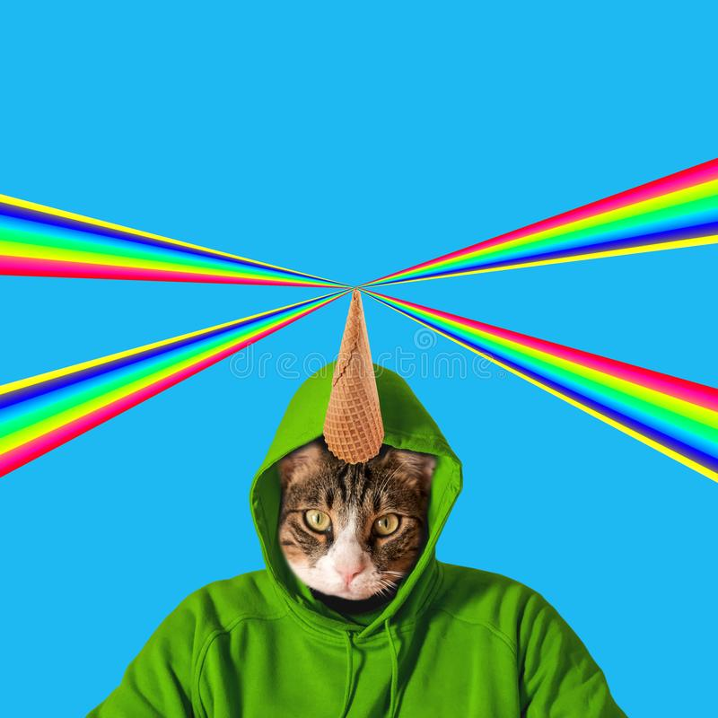 Cat head with rainbow, collage pop art concept design. Minimal summer background.  stock photography