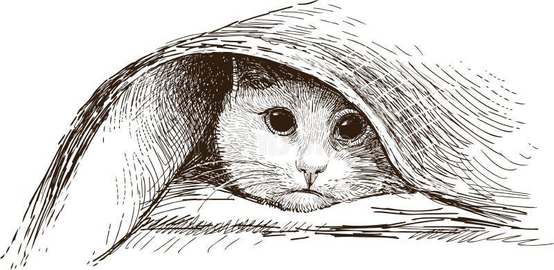 Cat Hiding vektor abbildung
