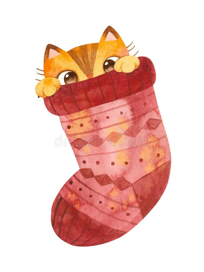 Free Cat Hiding In Woolen Sock. Cute Playful Kitten Christmas Character. Royalty Free Stock Images - 197943849
