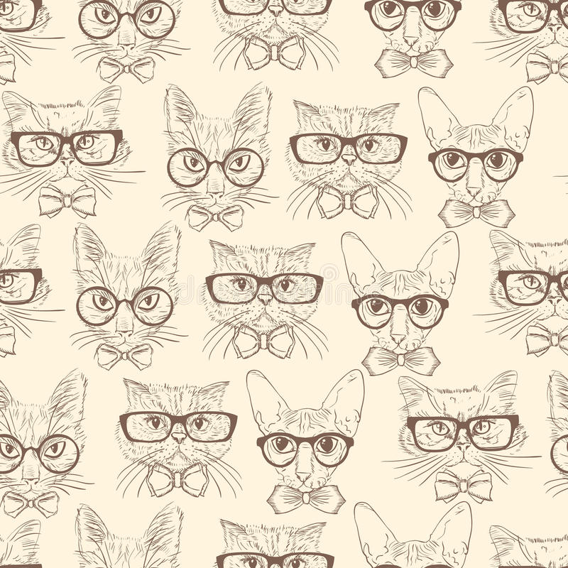 Cat hipsters seamless pattern royalty free illustration