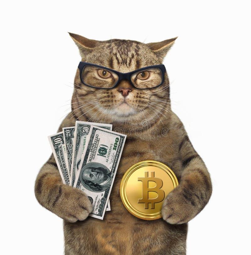cât de mult este un dolar în bitcoin