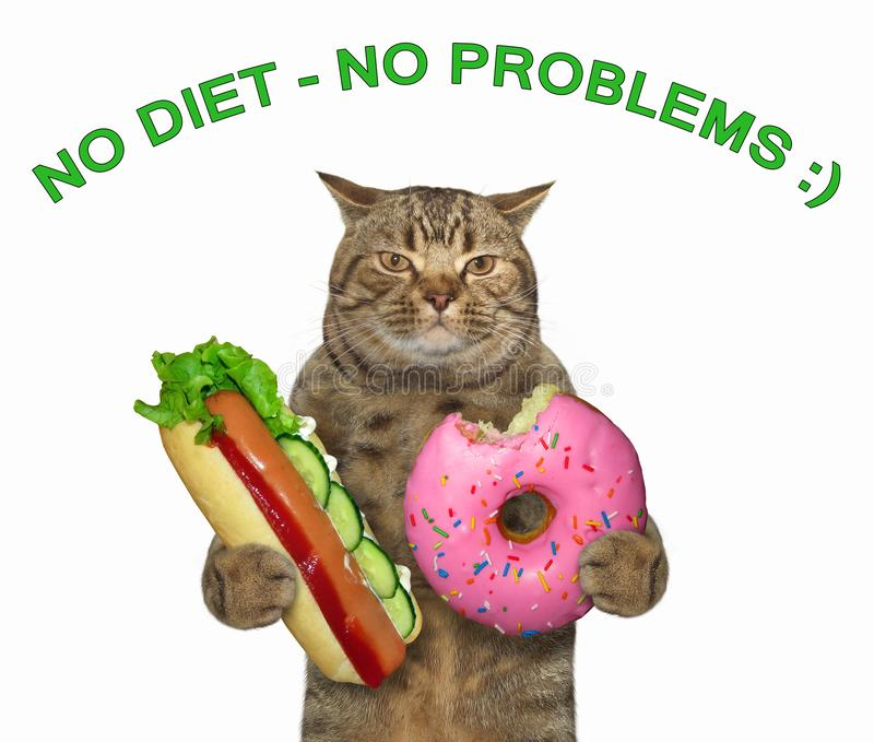 Cat with a hot dog and a donut royalty free stock photos