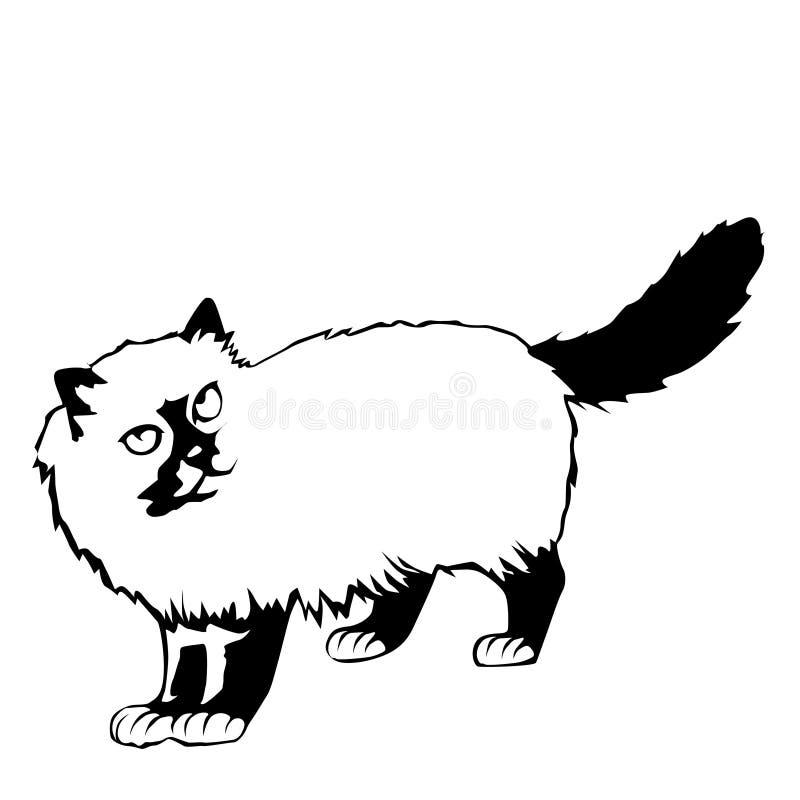 Cat Illustration stockfotografie