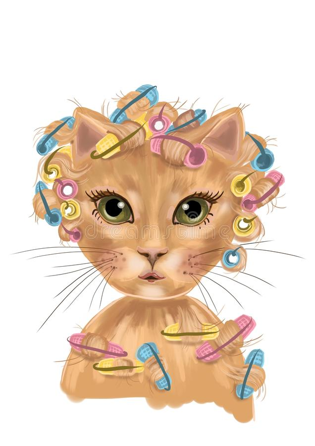 Free Cat Illustration With Curlers And Green Eyes Stock Photos - 115564753