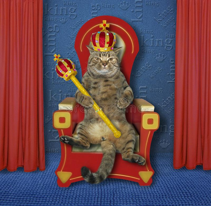 Cat king on the throne 2 stock photography