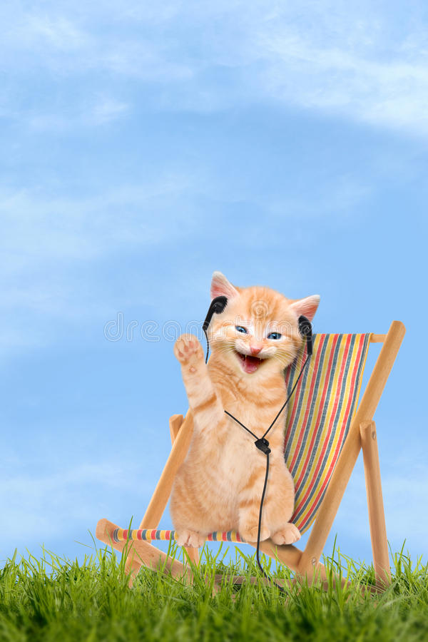 Cat / kitten sitting in deck chair with headphones. Cat / kitten sitting in deck chair / Sunlounger with headphones royalty free stock images