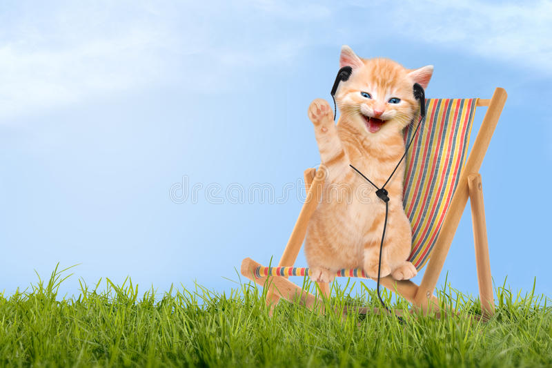 Cat / kitten sitting in deck chair with headphones. Cat / kitten sitting in deck chair / Sunlounger with headphones stock photos