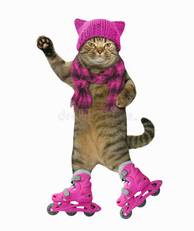 Cat on roller skates. The cat in knitted a hat and a scarf is on roller skates. White background royalty free illustration