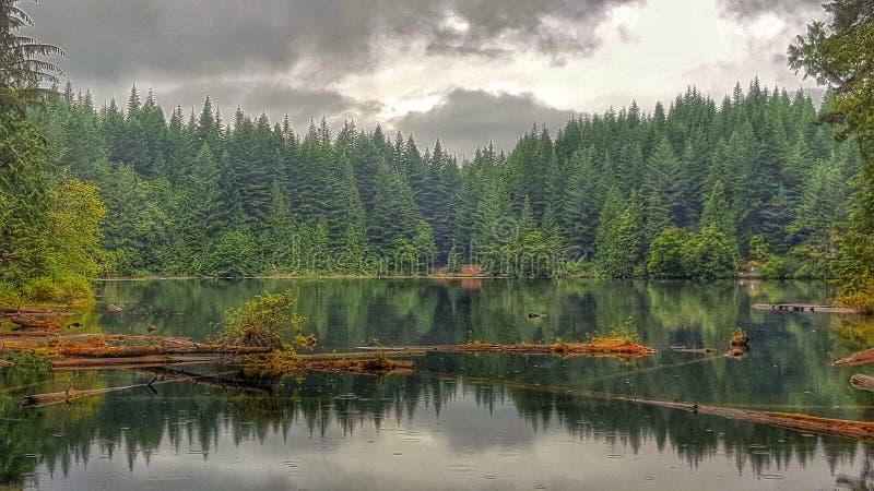 Cat Lake BC royalty free stock photo