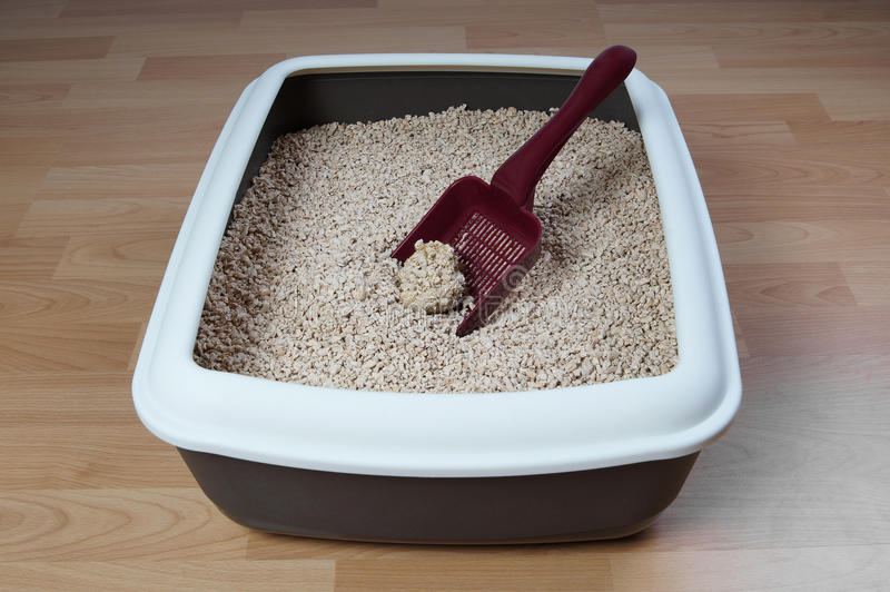 Cat litter box stock images