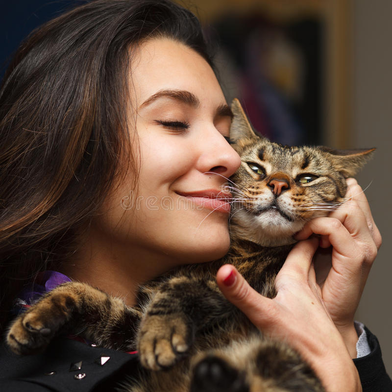 Cat lover royalty free stock images
