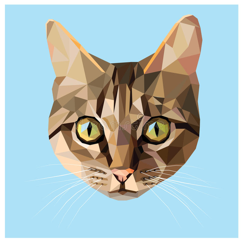Cat low poly. Cat colorful low poly design on blue background with a white outline. Animal portrait card design vector illustration