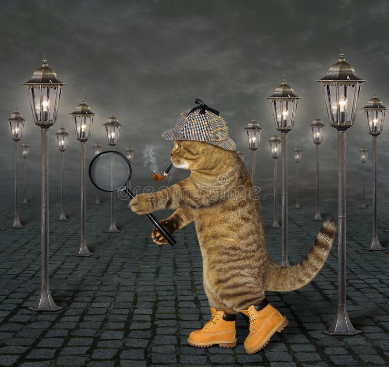 Cat with magnifying glass 2 royalty free stock images