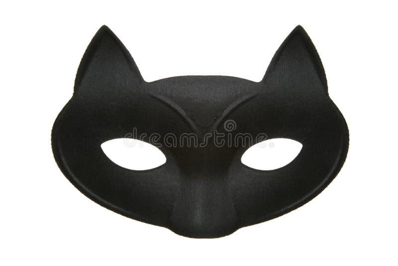 Cat masquerade mask royalty free stock photo