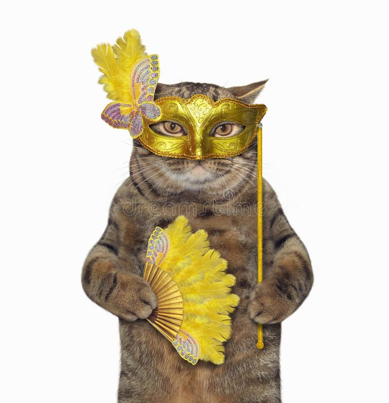 Cat in a masquerade mask royalty free stock photography