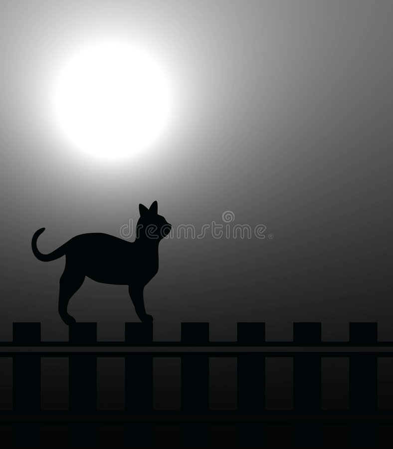 Download Cat In Moonlight Royalty Free Stock Image - Image: 7495576