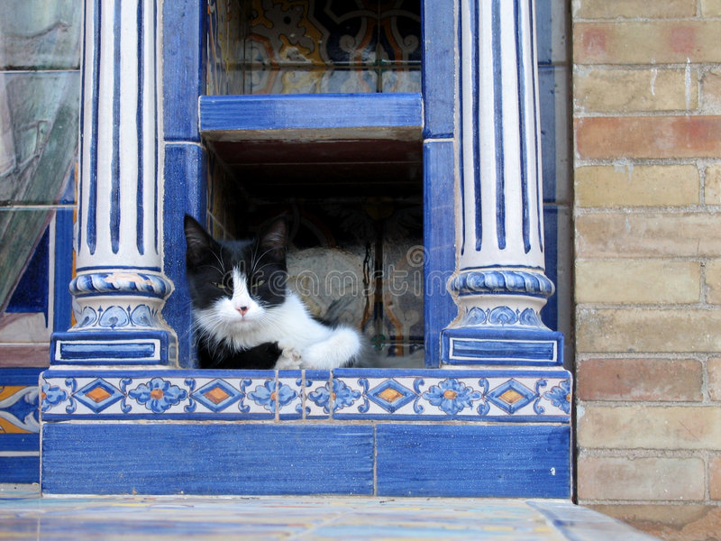 Cat Nap in Sevilla. A Cat hanging out in the Plaza de Espana in Sevilla, Spain royalty free stock image