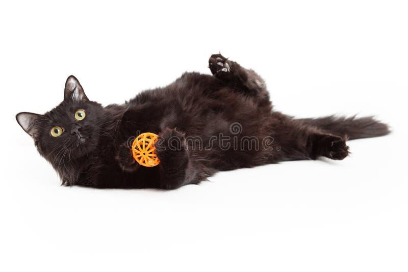 Cat With Orange Ball negra hermosa juguetona imagenes de archivo