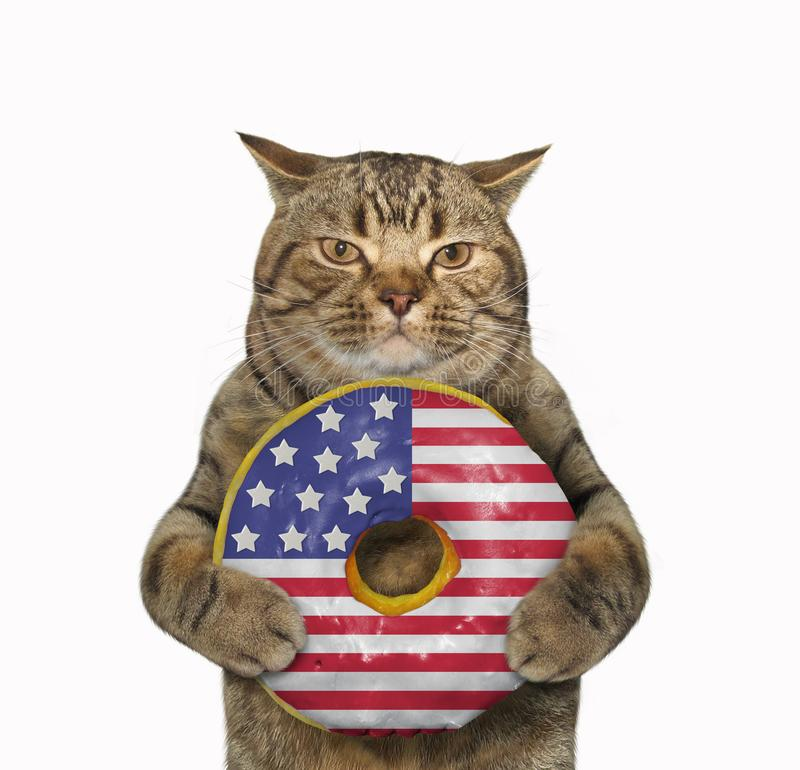 Cat with an american donut stock photography