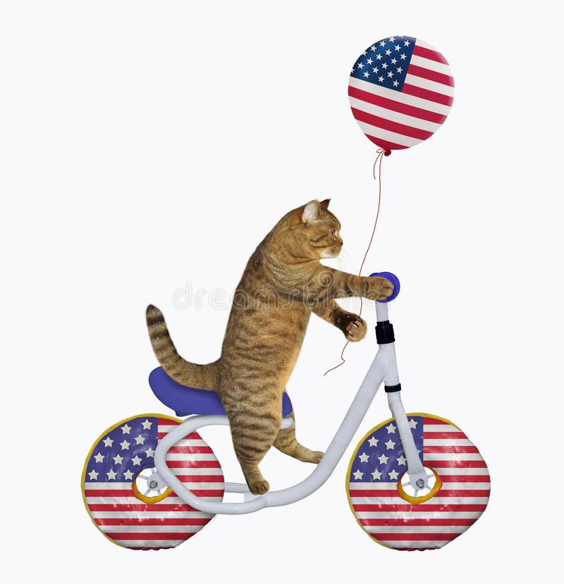 Cat patriot rides a bicycle stock photography