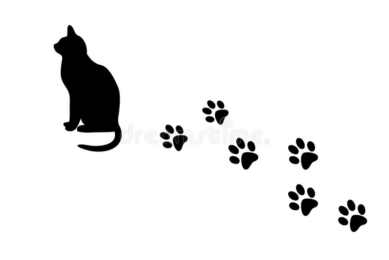 Cat and paw prints. Cat and its paw prints on white background