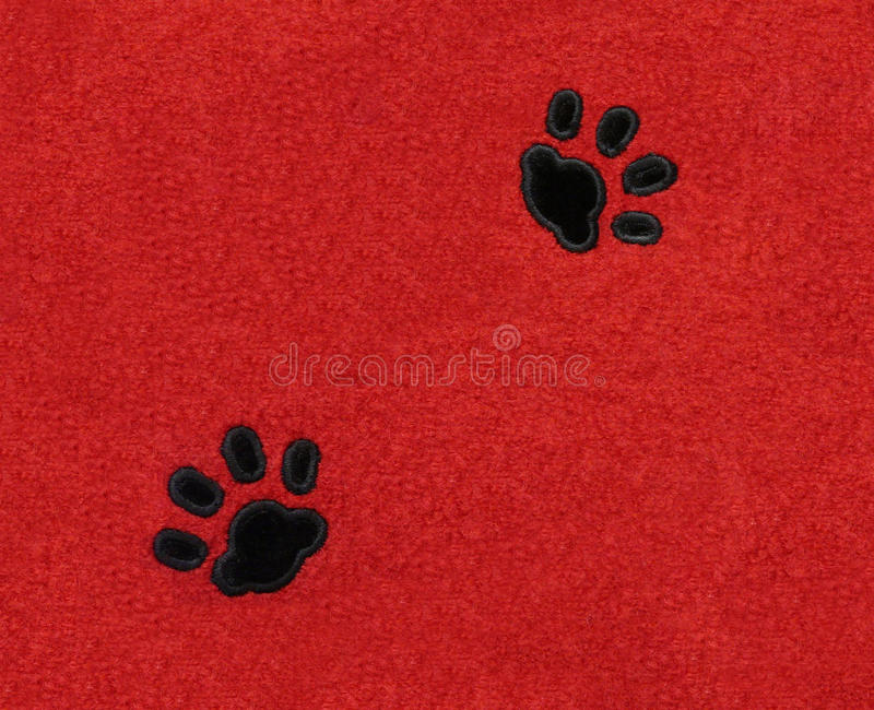 Cat Pawprints on Fabric stock photography