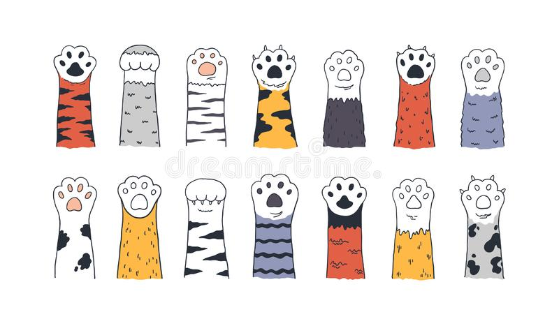 Cat paws. Doodle animal foot, cute cartoon kitten and puppy paws, wild and domestic animals foots. Vector kitty and dog royalty free illustration