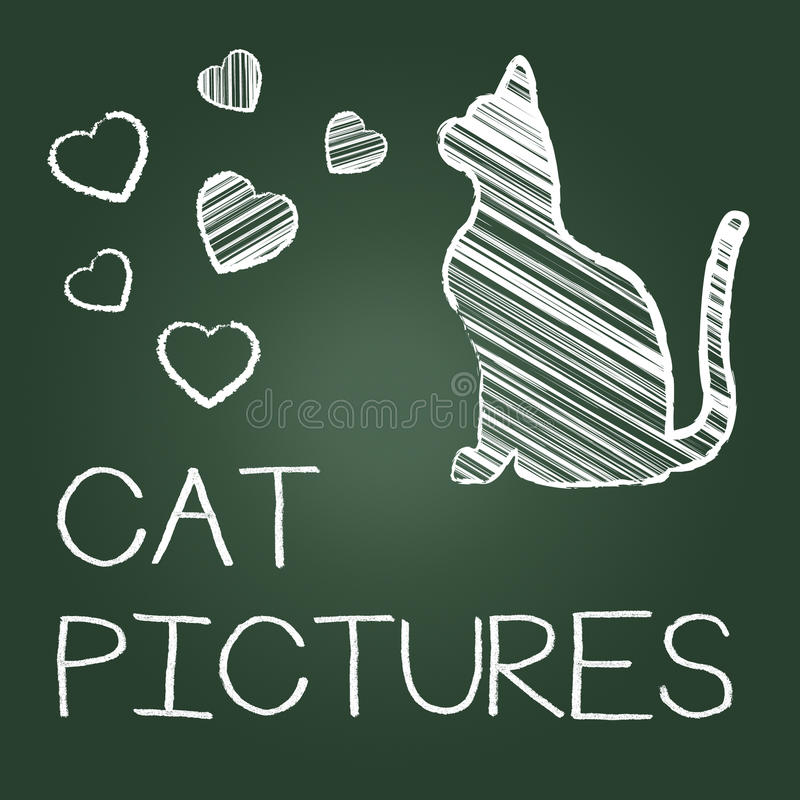 Cat Pictures Means Photos Pet And Image royalty free illustration