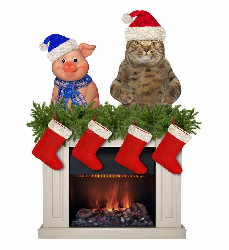 Cat and a pig near the fireplace 2. The cat in Santa Claus hat and a merry pig is behind the Christmas fireplace. White background royalty free stock photography