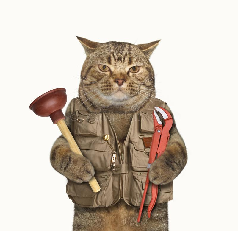 Cat plumber 1. The cat plumber is holding a plunger in one paw and a wrench in other. White background stock photos