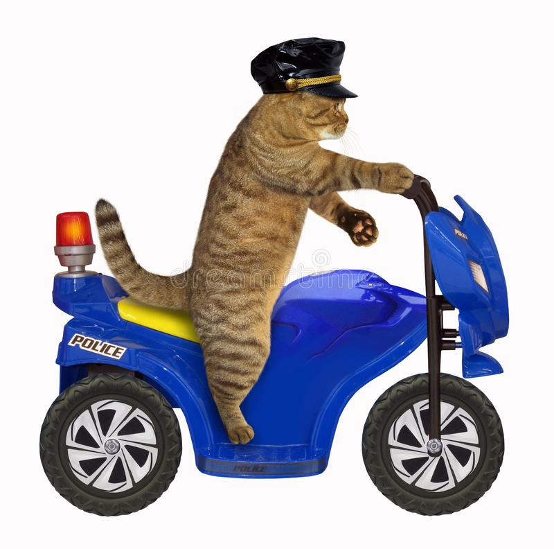 Cat policeman on a motorbike royalty free stock image