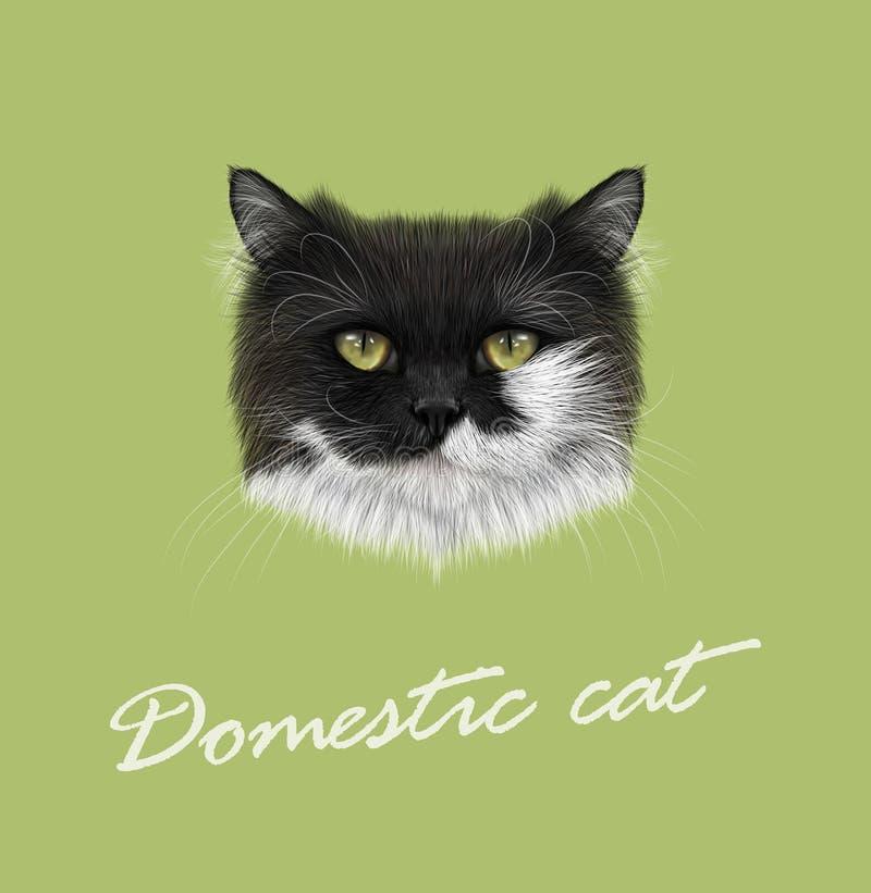 Cat Portrait doméstica ilustração stock