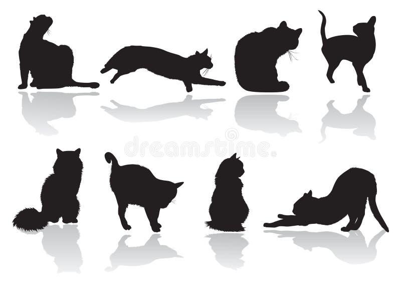 Cat pose vector illustration