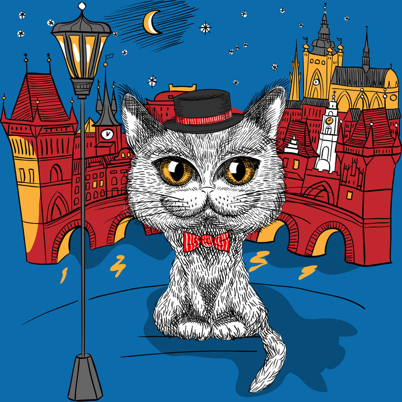 Cat in Prague, Prague Castle and Charles Bridge royalty free stock photography