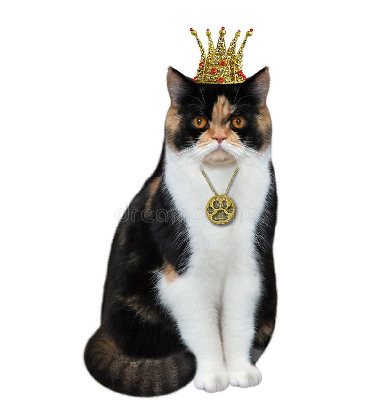 Cat queen with a pendant. The cat queen is wearing a crown and a pendant. White background. Isolated royalty free stock images