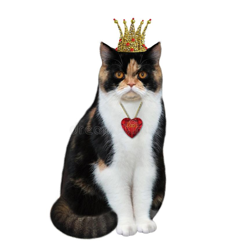 Cat queen with a pendant 2. The cat queen is wearing a crown and a pendant. White background. Isolated royalty free stock images